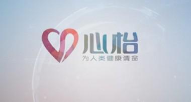 心怡集团宣传片